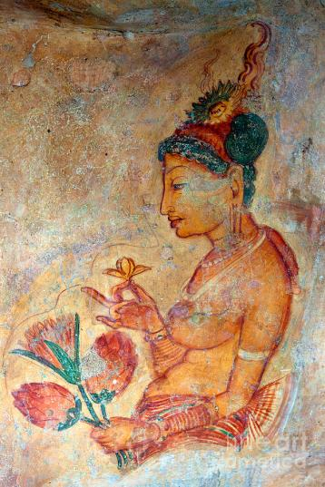 fresco; Sigiriya, Sri Lanka